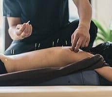 Articles | Acupuncture Brisbane North: NRCHI